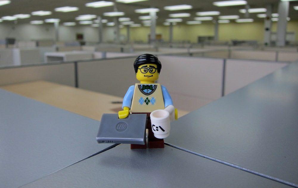Programador WordPress