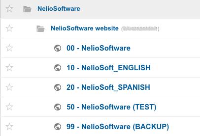 Vistas de Nelio Software en Google Analytics