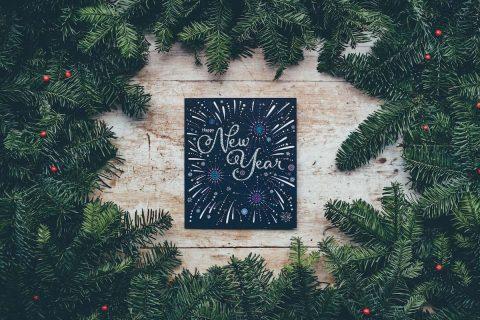 Leer Resumen del 2016 en Nelio Software