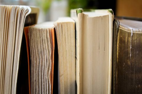 Leer 12 libros para dominar WordPress y mejorar durante el 2017