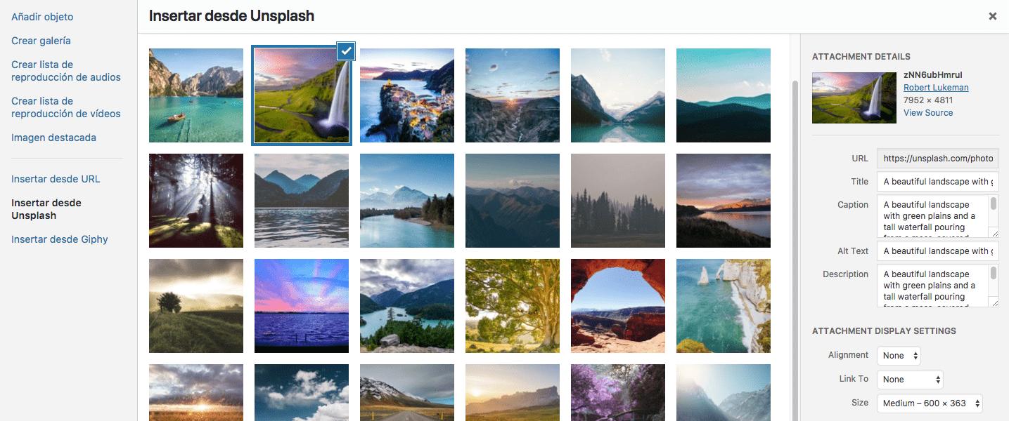 Buscar y seleccionar imagen en Unsplash