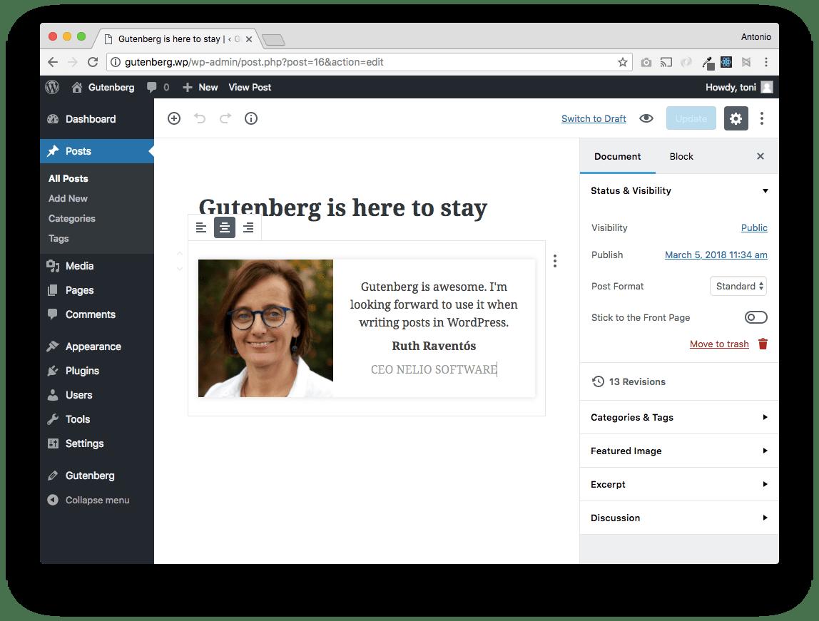 Añadiendo CSS al editor.css podemos lograr tener algo mucho más parecido a lo que habíamos esbozado en nuestro mockup.