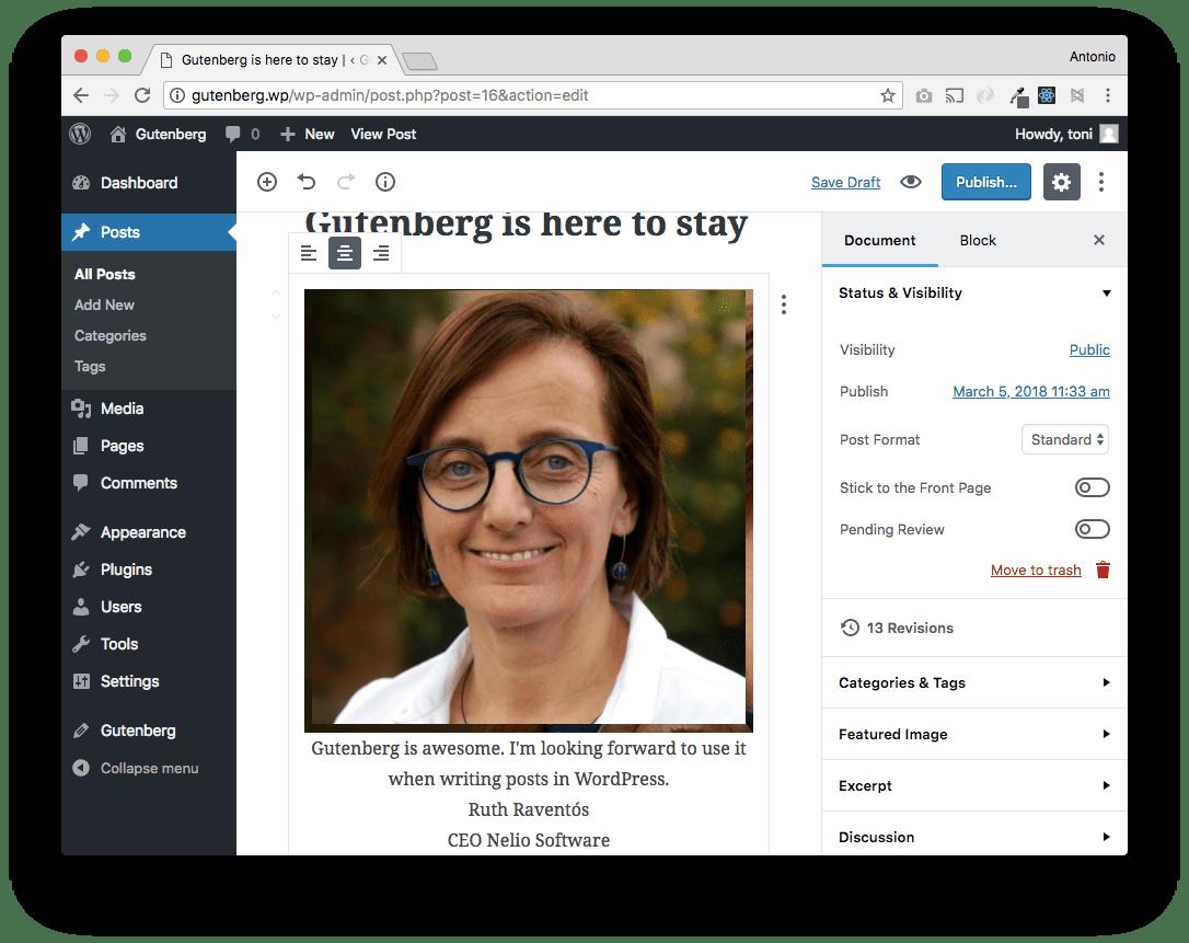Si añadimos valores al bloque, vemos que la imagen hace que todo se desborde. No hay estilos CSS definidos.