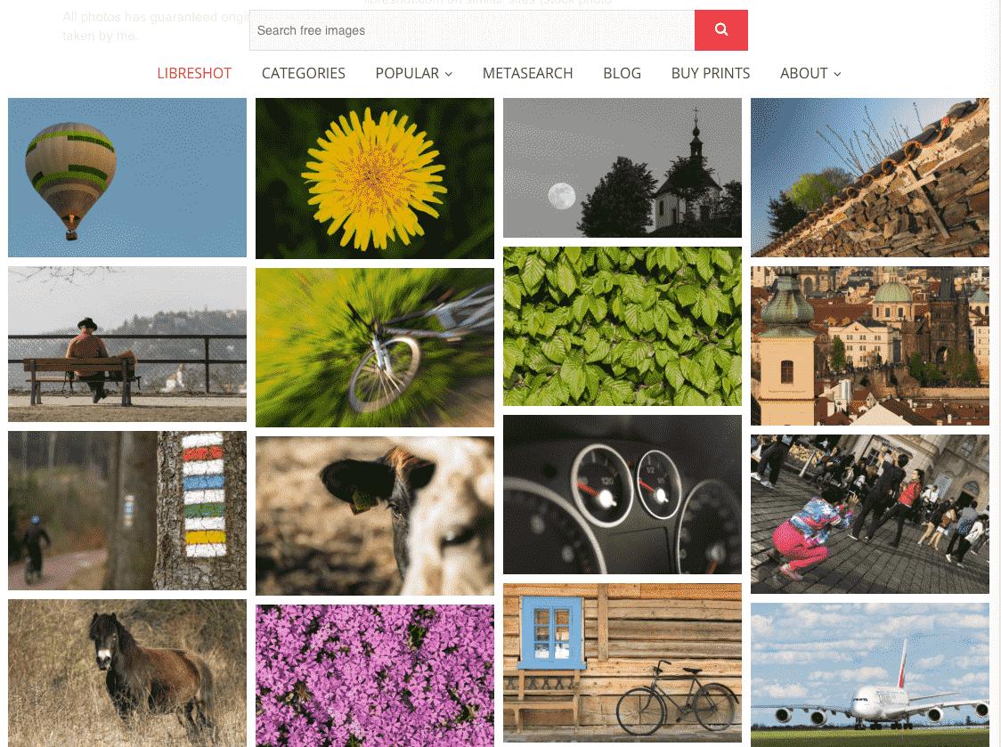 Captura de pantalla de la web LibreShot.