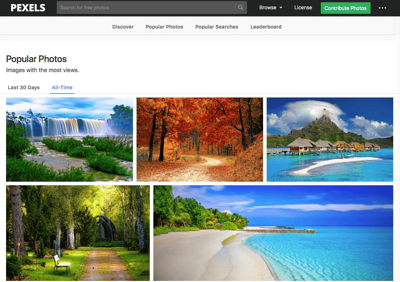 Captura de pantalla del sitio web de Pexels