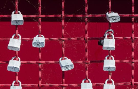 El efecto lock-in en WordPress