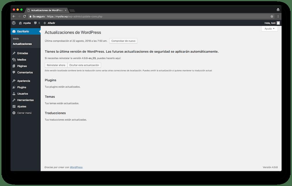 En el menú de actualizaciones verás todo lo que debes actualizar en tu WordPress.