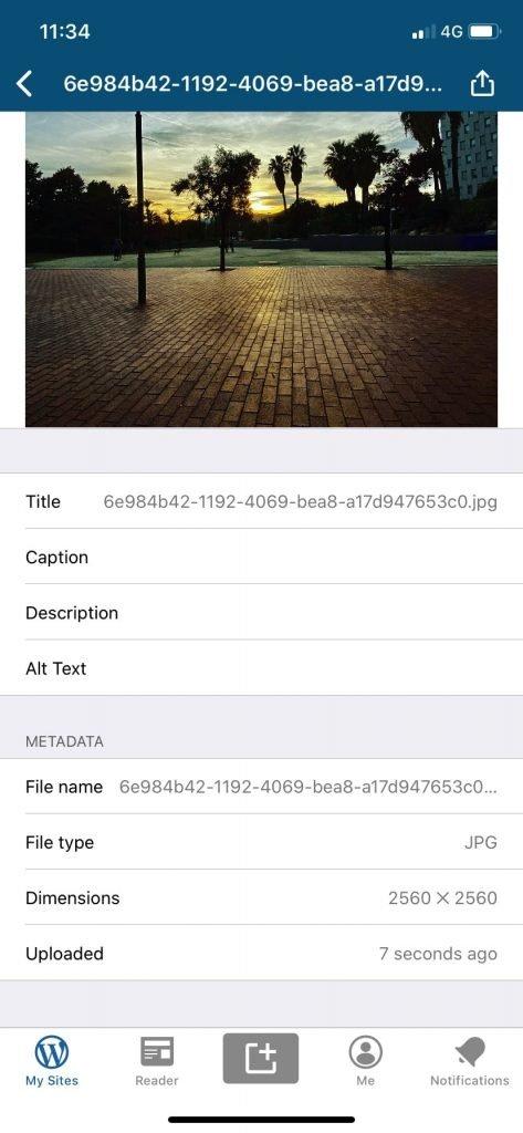 Meta información para editar en una imagen de la biblioteca de medios.