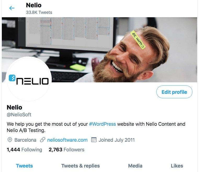 NelioSoft's profile on Twitter.