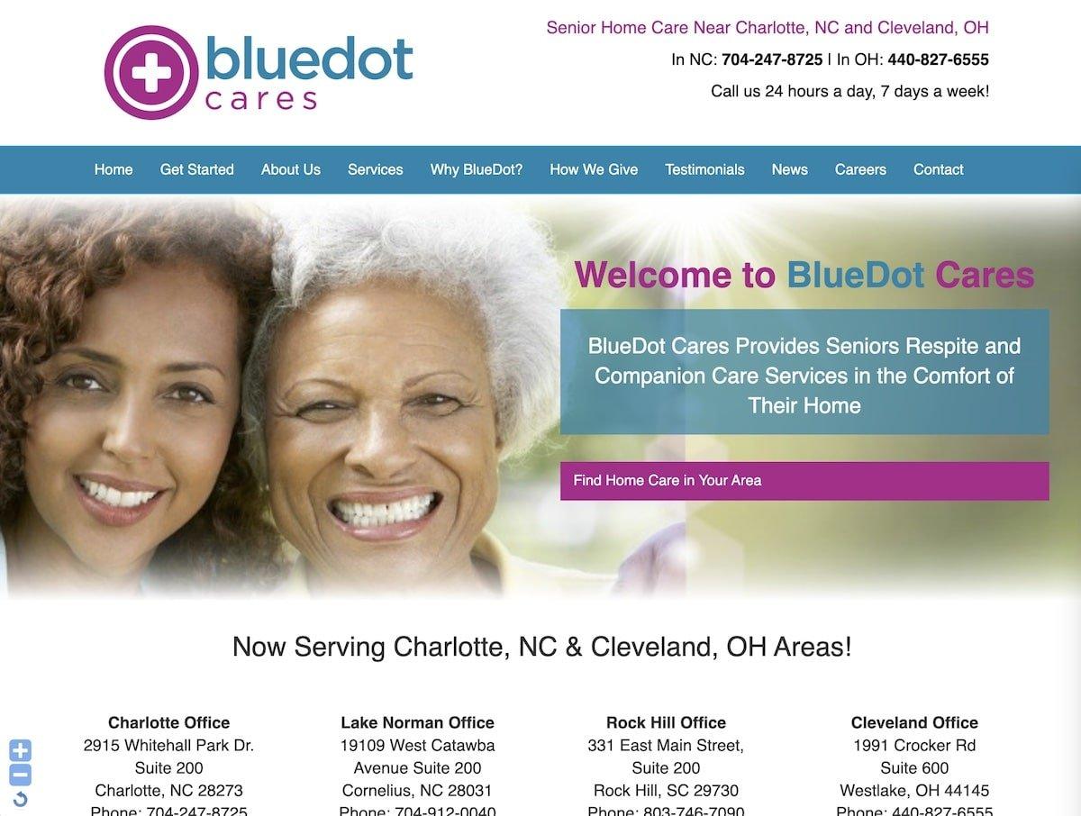 Captura de pantalla de la web de Bluedot Cares.