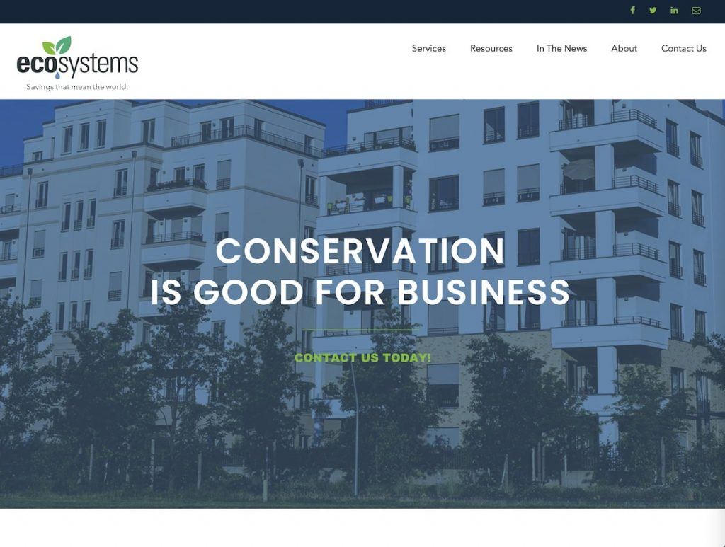 Screenshot of the EcoSystems website