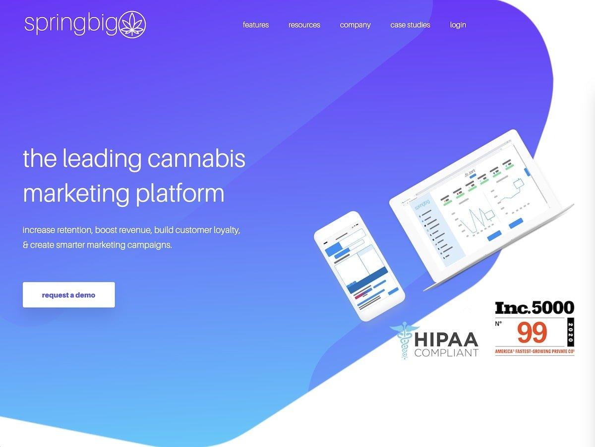 Captura de pantalla de la web de springbig.