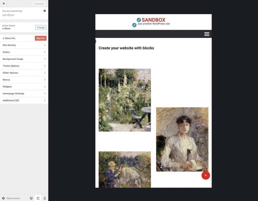 WordPress customizer view