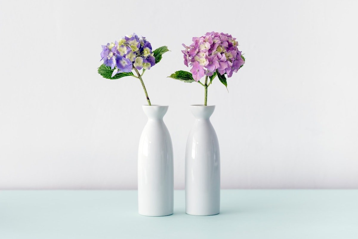 Foto de dos jarrones con una hortensia, una rosa y otra morada, por Maarten Deckers en Unsplash