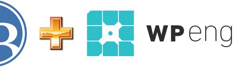 Read WordPress Split Testing for WPEngine Users