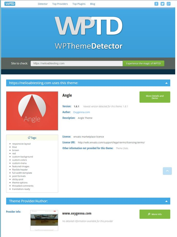 WPThemeDetector Screenshot