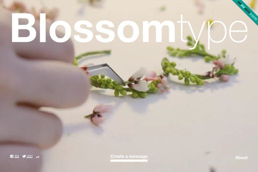 Blossomtype Website
