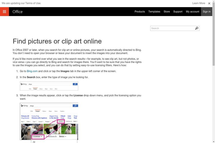 Microsoft Images Website