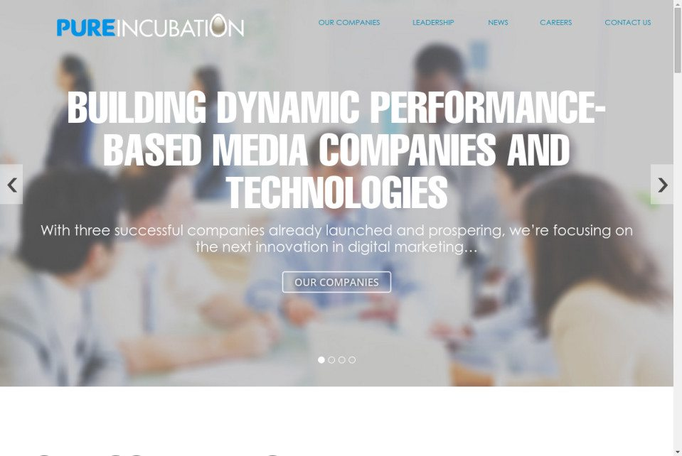 Pure Incubation Website