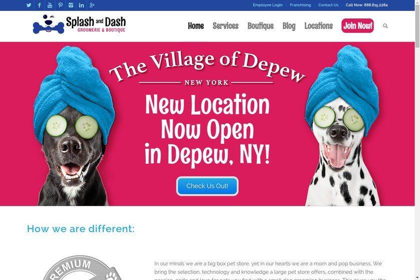 Splash and Dash for Dogs International Website