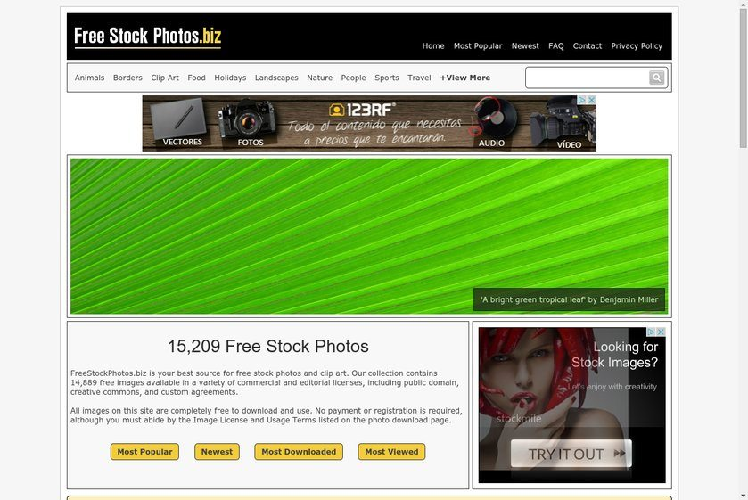 Freestockphotos.biz Website