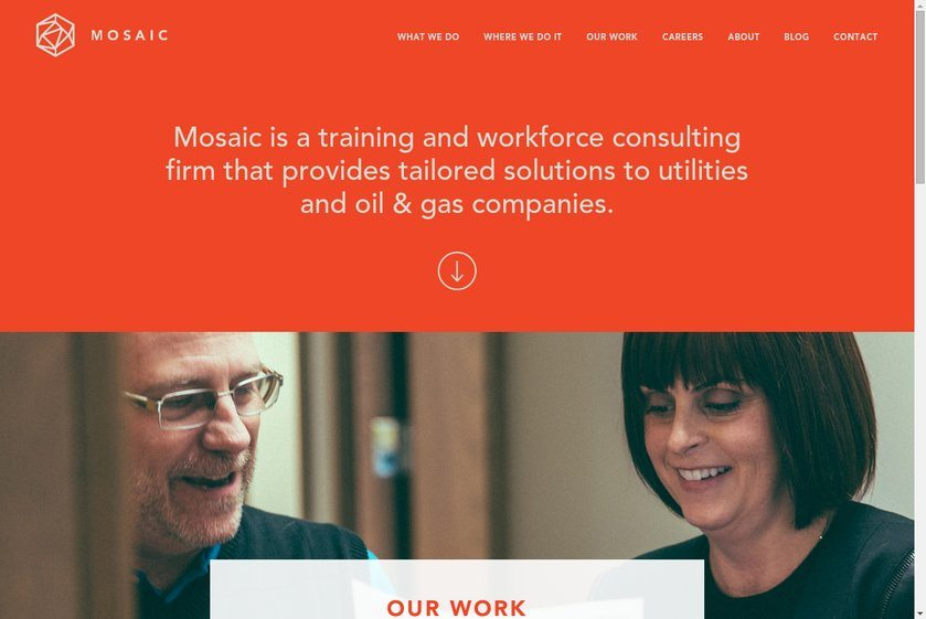 Mosaic Company Website