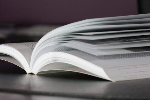 Read Nelio Content Marketing Plan III – Training