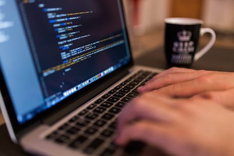 Read Editors to Program in WordPress