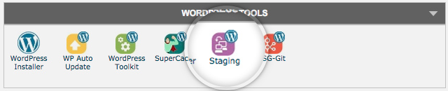 Create a staging in SiteGround