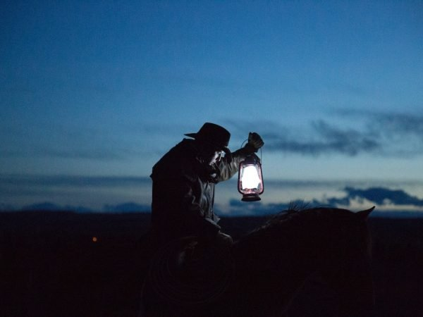 Read How to Activate The Night Mode in WordPress