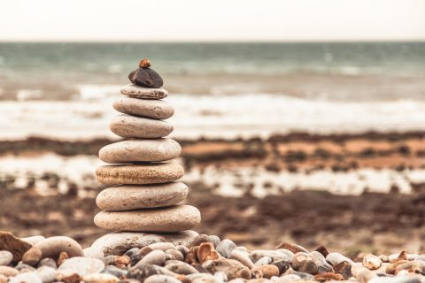 Read Introduction to the WordPress Template Hierarchy