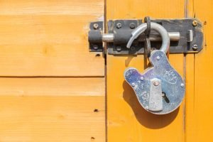 Read Unlock Your Content with Nelio Unlocker